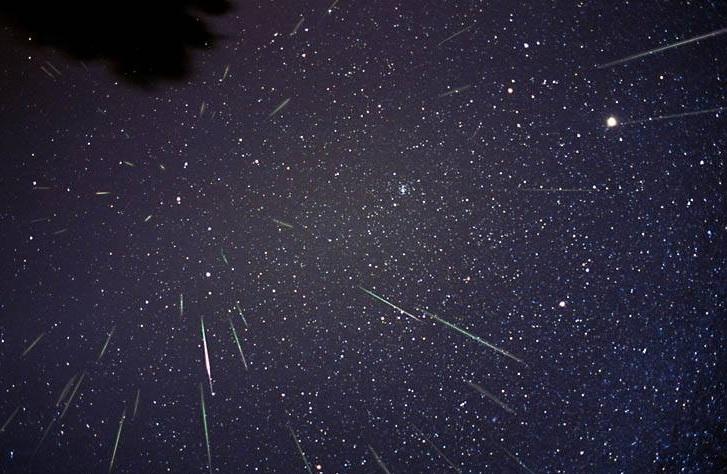 Imagem do astrofotógrafo F. Espenak revela as Leonídeas, vistas em 2001.