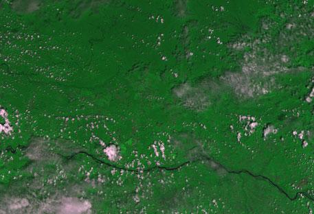 Imagem da câmera brasileira WFI, a bordo do CBERS-4, fotografa a Amazônia.