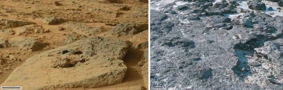 Comparação da foto do Curiosity com formações microbianas similares na Terra. (Crédito: Nora Noffke)