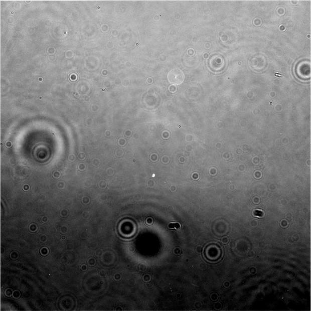 Imagem não-processada obtida pela Cassini, apontando para Encélado (Crédito: Nasa)