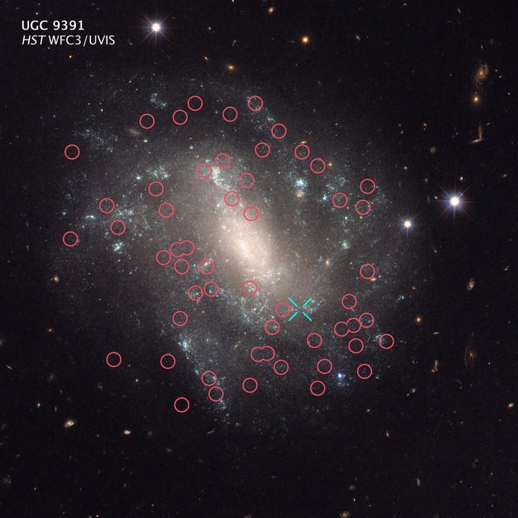 Uma das galáxias investigadas pelo estudo. Os círculos indicam cefeidas, e o X, uma supernova Ia (Crédito: STScI/ESA/Nasa)
